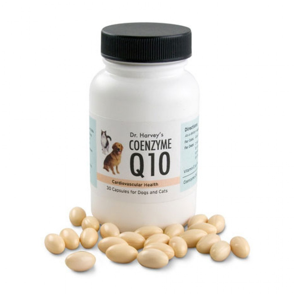 Dr. Harvey's Coenzyme Q10 for Dogs
